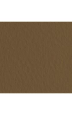 Бумага для пастели Tiziano 160г/м.кв 21x29,7см кофейный 1л