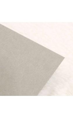 """Бумага цветная """"FOLIA"""", 50*70 см, 300 г/м2, светло-серый, 1 л"""