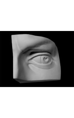 Глаз Давида левый, гипс