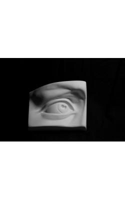 Глаз Давида правый, гипс