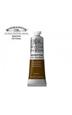 Масляные краски Winton, 37мл, коричневый Ван Дейк