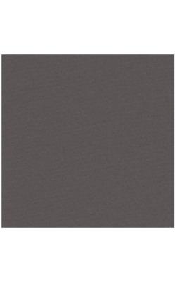 """Бумага для пастели """"Lana Colours"""", 45% хлопок, 50*65 см, 160 г/м2, мокко, 1 л"""
