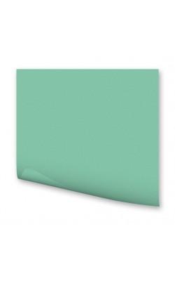"""Бумага цветная """"FOLIA"""", А4, 130 г/м2, мята, 1 л"""