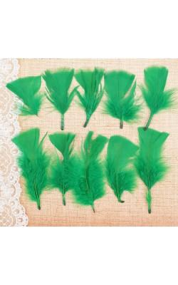 Набор перьев для декора 10 шт, размер 1 шт 10*4, цвет светло зеленый