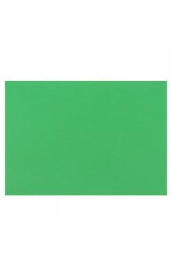 """Картон цветной """"Sadipal"""" Sirio, А3, 170 г/м2, зеленый малахит, 1 л"""
