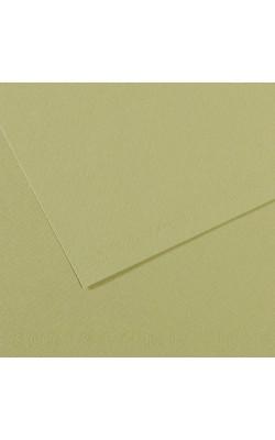"""Бумага для пастели """"Canson"""" Mi-Teintes, 50% хлопок, А4, 160 г/м2, зелёный светлый №480, 1 л"""