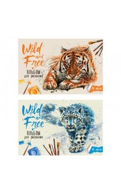 """Альбом для рисования 40л., А4, на скрепке ArtSpace """"Wild cats"""""""