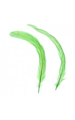 Набор перьев для декора 2 шт, размер 1 шт 30*3, цвет зеленый