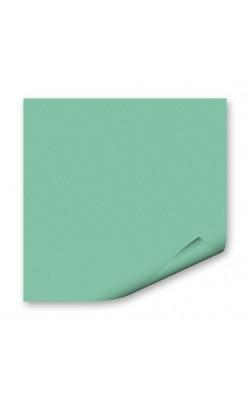 "Бумага цветная ""FOLIA"", 50*70 см, 130 г/м2, мята, 1 л"