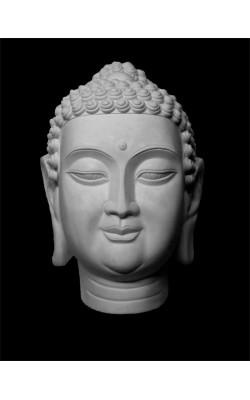 Будда, гипс
